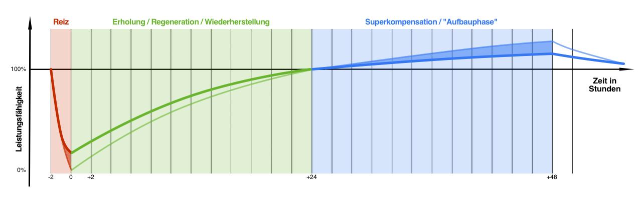 Superkompensationsmodel